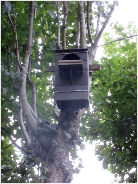 nesting-boxes